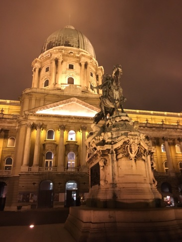 Horse at Buda Castle Hungary
