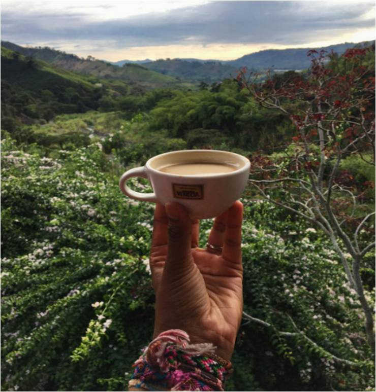 And here it is, the perfect brew in a perfect setting