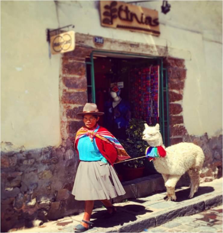 Taking my llama for a walk