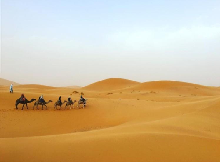 The Magnifique Sahara